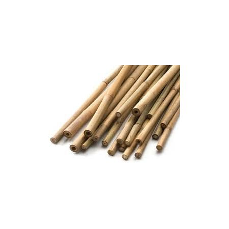 Bamboo Canes 6Ft 28-32 Lbs (12-14Mm)