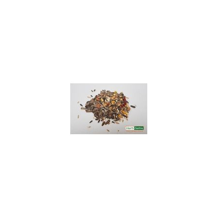 Traditional Parrot Mix Bird Food 2Kg